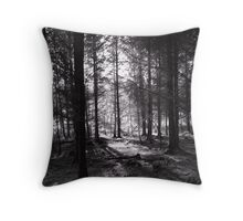 Lakeside Walk - Light Throw Pillow