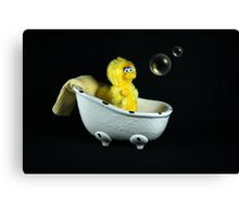 Bath Time! Canvas Print