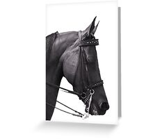 Sleep standing up like a horse Greeting Card