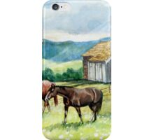 Horse and Barn Landscape iPhone Case/Skin