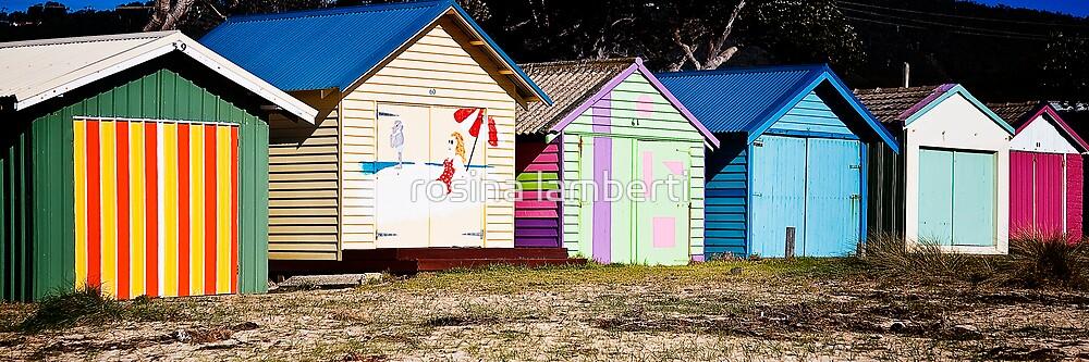 Boat Houses by Rosina  Lamberti