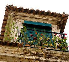 Lisbon color  by David Roberts