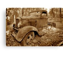 Out to pasture... Canvas Print