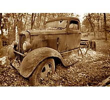 Out to pasture... Photographic Print