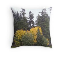Lake Goodwin Throw Pillow