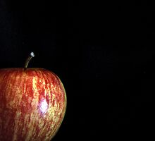 Apple by Gayle Dolinger