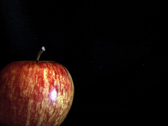 Apple by Gayle Dolinger