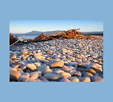 Pebbles on the Beach by Cat Perkinton