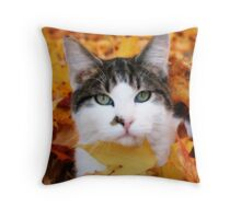 Laying in wait... Throw Pillow