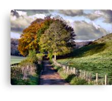 The Road to Delcombe Farm Canvas Print