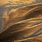 Patterns in the sand   by aussiedi