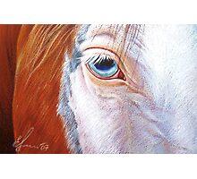 Paint close-up Photographic Print
