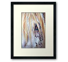 Appaloosa Framed Print