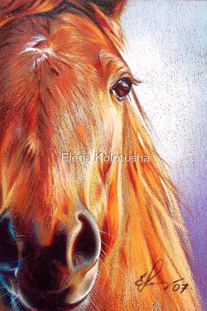 Horse by Elena Kolotusha
