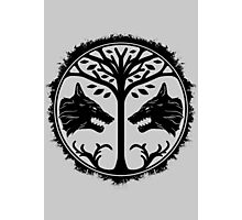 The Iron Banner (Black) - Destiny Photographic Print