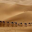 u will not walk alone.................! by purelife