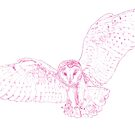 Swooping Barn Owl by Extreme-Fantasy