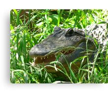 """Saltwater Crocodile"" Canvas Print"