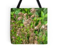 Dried Pods Tote Bag