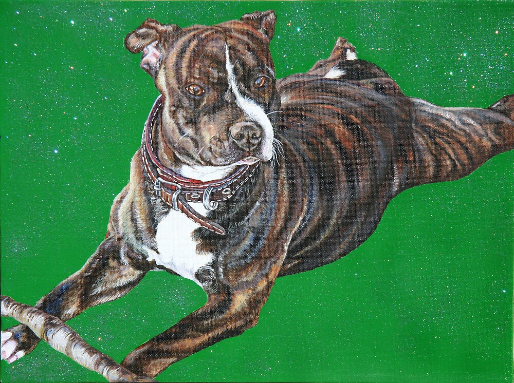 'Chaos' - The Staffordshire Bull Terrier by Kimberley East