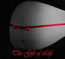 The Gift of Life by elyglen