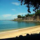 Puerto Rico Me Encanta   by Isa Rodriguez