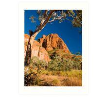 Kimberley Landscape; Western Australia. Art Print