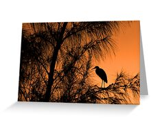 Jamaican Twilight Greeting Card