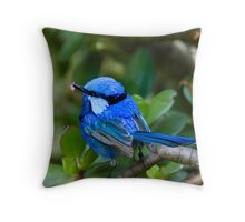 Splendid ! Throw Pillow