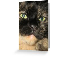 Shady Fur Face Greeting Card