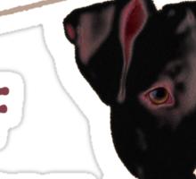 caution - beware of pitbull do not approach Sticker