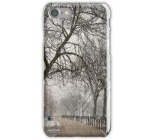 DC Winter iPhone Case/Skin