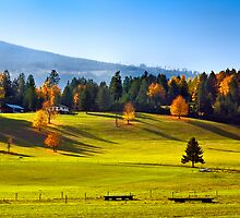 AUTUMN PASTURES by Sandy Stewart