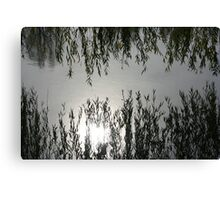 Reflections in the Lake Canvas Print