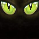 Cat Eyes by Kevin Middleton