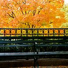 Fall Bench 2 by RDJones