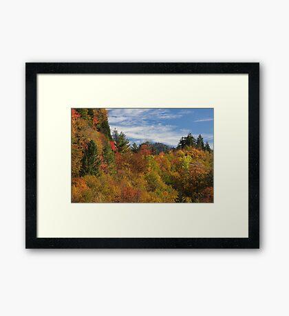 Fabulous Fall II Framed Print