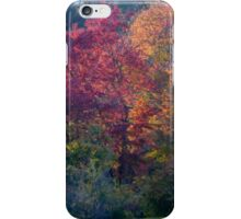Fall Colors Backlit iPhone Case/Skin