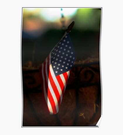 Flag in a pot Poster
