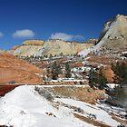 Zion National Park in Winter by Patricia Montgomery