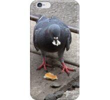 New York Pigeon 2 iPhone Case/Skin