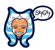 """""""Skyguy"""" by The Quiet Storm"""