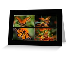 Butterflies in the Window Greeting Card