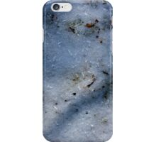 Winter Shadows in Ice iPhone Case/Skin