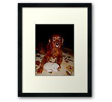 Wild Bill Hickock Kitten and Gal Pal Andromeda Framed Print