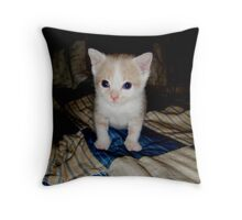 Who Me?? Wild Bill Kitten Throw Pillow