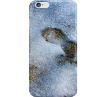 Winter Colors iPhone Case/Skin