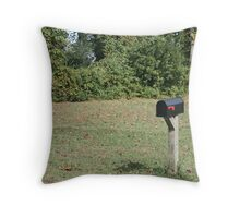 Going Postal Throw Pillow