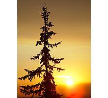 Montana Sunset Photographic Print