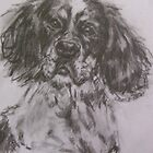 spaniel by christine purtle